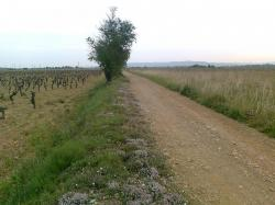 Un km en jetée, de Cruscades...( vers..)