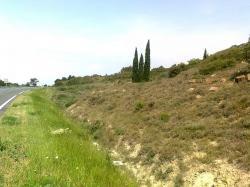 Deviat RN 113-Moux:V.A,restes,sectionnés gauche Cyprés