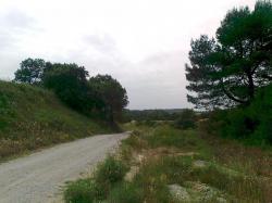 voie-route venant de Villepeyrous,allant vers ouest